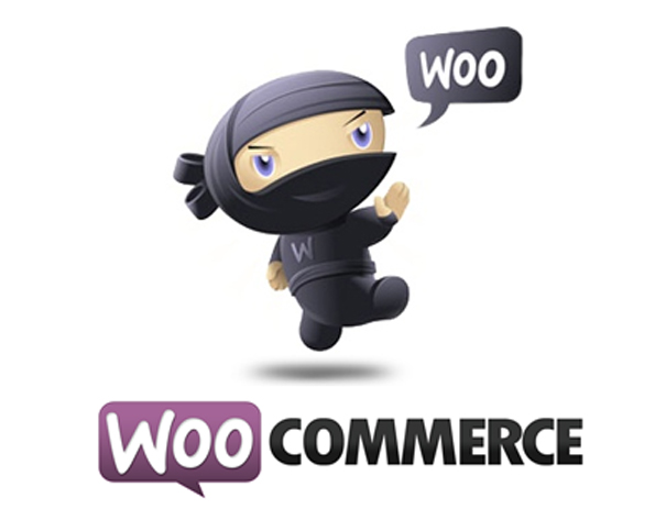 extra stock option in woocommerce